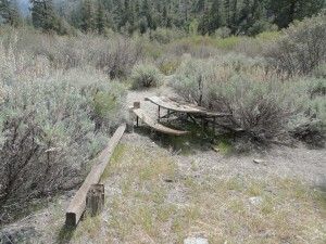 A sun-baked picnic table is taken back by encroaching Great Basin sagebrush at abandoned Cabin Flat campground.