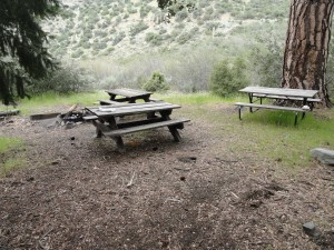 Cluster of tables and fire pit, which appear to be an actively used site at Cabin Flat campground.