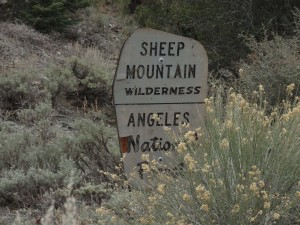 A weathered Forest Service boundary sign denotes the edge of the Sheep Mountain Wilderness in the Prairie Fork up canyon from Lupine Campground.  Both Lupine and Cabin Flat Campgrounds are just outside the boundary.