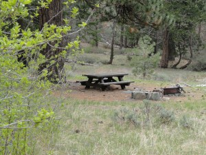A peaceful campsite as scene here at Lupine Campground in the Prairie Fork.  Located at 6,500' elevation, this forested destination is replete with 12 campsites and nearby Columbine Spring.   It is also the 'jumping-off' point for hikes into the Fish Fork.  Take forest service road 3N39 to access this site.