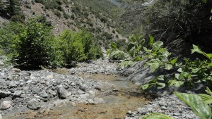 Looking downstream, near the confluence of Mine Gulch and the main canyon of the East Fork of the San Gabriel River.