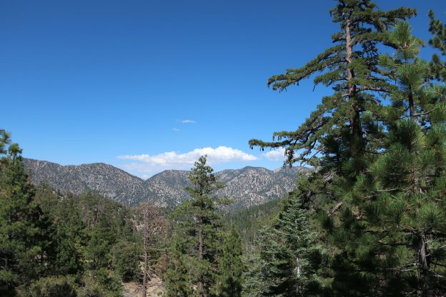The Great Outdoors Report | 1390 Hwy 2 PO Box 398 Wrightwood